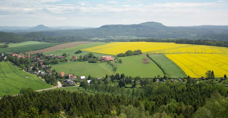 Landschaft Bayerischer Wald